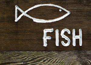 熱帯魚 エンゼルフィッシュ